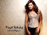 Payal Rohatgi Sexy