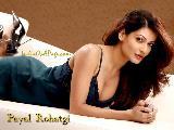 Payal Rohatgi Bold