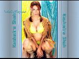 Kashmira Shah sexy