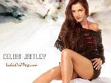 Celina Jaitley beautiful