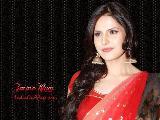 Zarine Khan beautiful