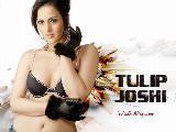 Tulip Joshi Hot