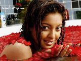 Tanushree Dutta Hot