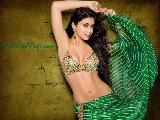 Shriya Saran Beautiful
